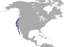 Brush Rabbit range.png