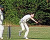 Buckhurst Hill CC v Dodgers CC at Buckhurst Hill, Essex, England 63.jpg