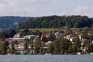 Burghölzli (Weinegg) - Zürichsee - ZSG Wädenswil 2012-08-12 16-44-33 (WB850F).jpg
