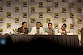 Burn Notice Panel 4 2010 CC.jpg