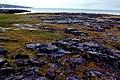 Burren - R477 southwest of Black Head - View to SW - geograph.org.uk - 1624492.jpg