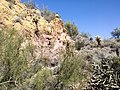 Butcher Jones Trail - Mt. Pinter Loop Trail, Saguaro Lake - panoramio (145).jpg