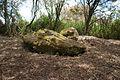 Butte aux Gorzeaux - Sépultures méglithiques - 1.jpg