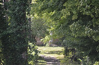 National Register of Historic Places listings in Barren County, Kentucky - Image: Bybee House through the trees