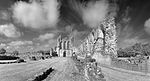 Byland Abbey North Yorkshire UK.jpg