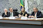 CDR - Comissão de Desenvolvimento Regional e Turismo (30049421961).jpg