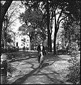 CH-NB - USA, Savannah-GA- Park - Annemarie Schwarzenbach - SLA-Schwarzenbach-A-5-11-108.jpg