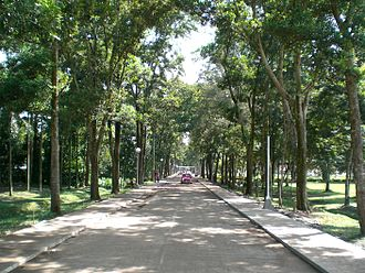Central Mindanao University - CMU's driveway