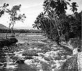 COLLECTIE TROPENMUSEUM Een rivier met sterke stroming bij Djasinga tussen Bogor en Rangkasbitung West-Java TMnr 10004455.jpg