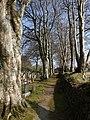 Campdowns Cemetery - geograph.org.uk - 1240267.jpg