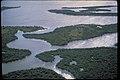 Canaveral National Seashore, Florida (54cd99d9-6696-4b27-ace4-02e053b476df).jpg