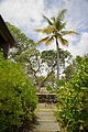 Caneel Bay Beach Front Rooms by Turtle Bay Surroundings.jpg