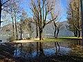 Cannobio, il lago incontra il parco - Flickr - Irene Grassi (sun sand ^ sea).jpg
