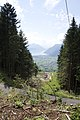 Canton de Schwytz - panoramio (85).jpg