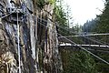 Capilano Suspension Bridge 2012 Winter (6846062332).jpg