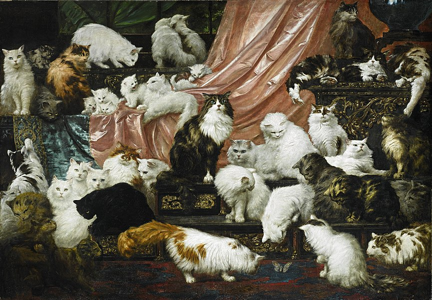 cats - image 7