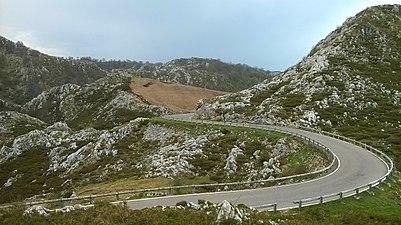 Carretera Picos de Europa.jpg