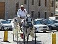 Carriage in Chania, Creta (03).jpg