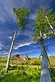 Castle Rocks Idaho.jpg