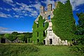 Castles of Connacht, Menlough, Galway (1) - geograph.org.uk - 1953889.jpg