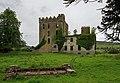 Castles of Munster, Castle Otway or Cloghonan, Tipperary (2) - geograph.org.uk - 2495304.jpg