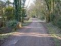 Cawston Wood - geograph.org.uk - 1756377.jpg
