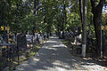 Cemetery panorama2.jpg
