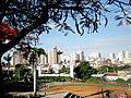 Centro da cidade de Catanduva visto da Praça jornalista Lecy Neubern Pinotti, já conhecida como Praça do Idoso, no São Francisco. O local, com área total de 14,5 mil metros quadrados conta com qua - panoramio.jpg