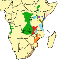 Cercopithecus-albogularis-Distribution.png
