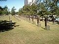 Chair-graves.jpg