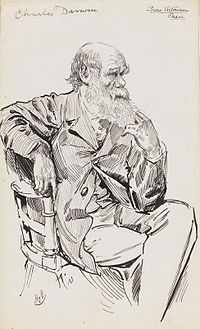 Charles Darwin caricature by Harry Furniss.jpg