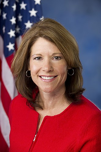 Cheri Bustos - Image: Cheri Bustos official photo