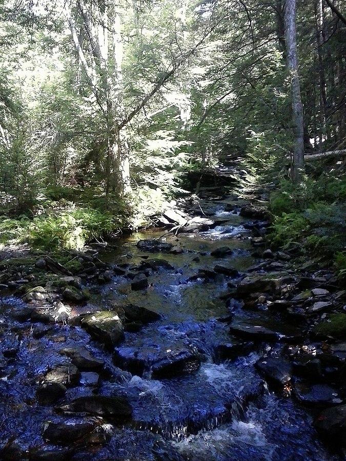 Cherry Run (South Branch Bowman Creek tributary)