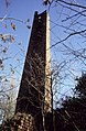 Chimney, Carr's Tilery, Margrove Park - geograph.org.uk - 1424295.jpg