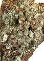 Chlorargyrite-Iodargyrite-rare08-2-97b.jpg