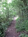 Chudleigh footpath - geograph.org.uk - 871229.jpg