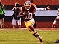 Cleveland Browns vs. Washington Redskins (20588868451).jpg