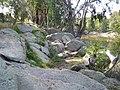 Close-up of the granite at The Rocks (5).jpg