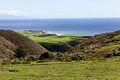 Coast Dairies near Santa Cruz.JPG
