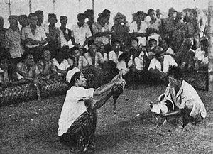 Deep Play: Notes on the Balinese Cockfight - Example of a cockfight in Bali circa 1958.