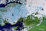 Cold Turkey ESA415078.jpg