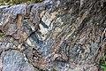 Colorado Geology.jpg