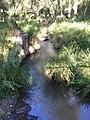 Condamine River.jpg