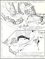 Cooperative Gulf of Mexico estuarine inventory and study, Florida - J. Kneeland McNulty, William N. Lindall, Jr., and James E. Sykes (1972) (20510262198).jpg