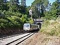 Corsica - Vizzavona - train station - train entering the tunnel - panoramio.jpg