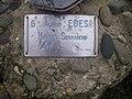 Cota Monte Serradero.jpg