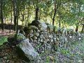 Cotobade-Carballeira de San Xusto-muro (5139420324).jpg