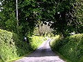 Country road - geograph.org.uk - 1300046.jpg