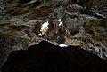 Cova Tallada, roca gran.JPG