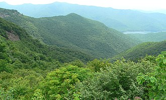 Appalachian-Blue Ridge forests - View from the Blue Ridge Parkway in North Carolina
